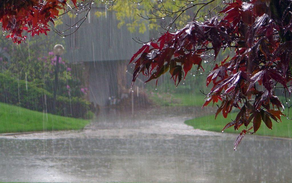 lluvia paisaje