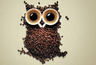buho granos de cafe