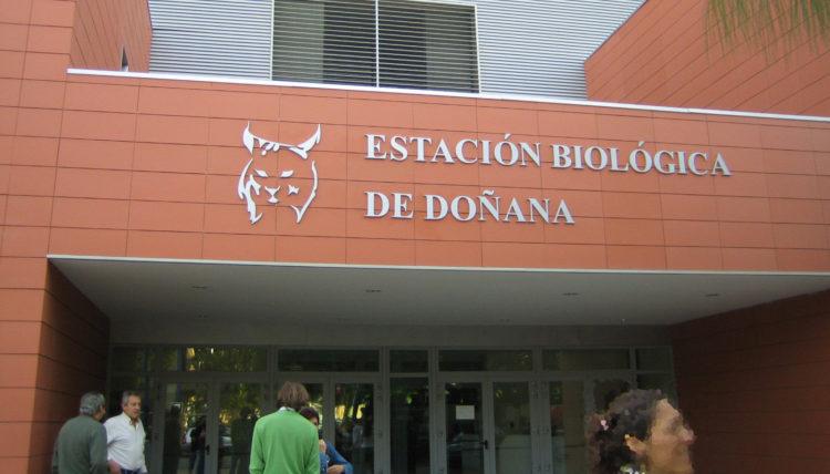 estacion biologica de doñana