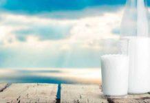 leche entera