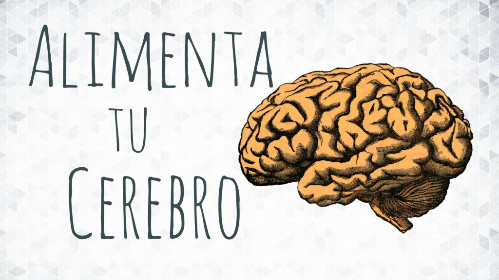 alimentar cerebro