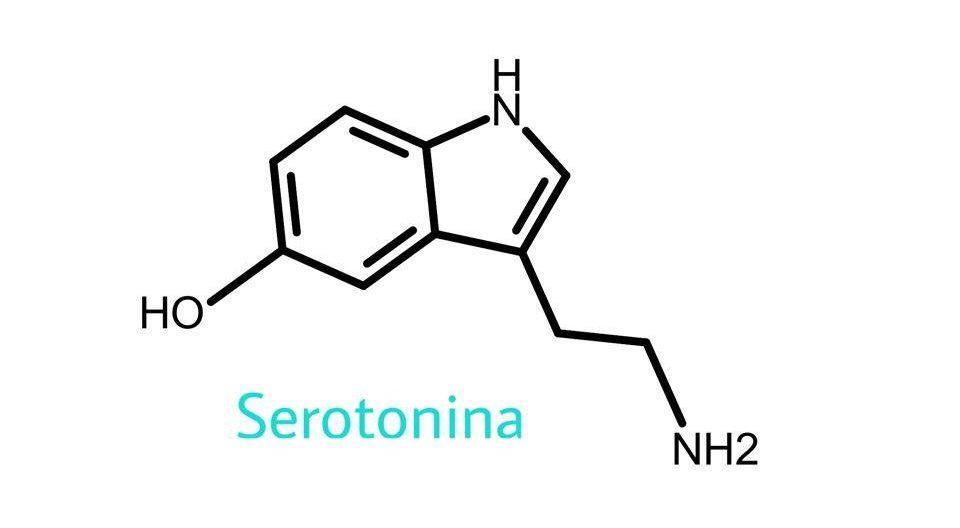 codigo serotonina