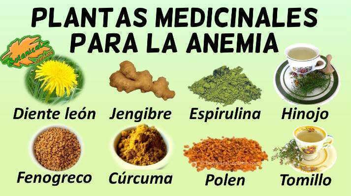 Tratamientos para la anemia